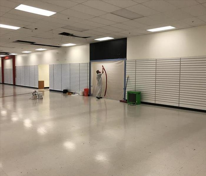 Mold Removal in Retail Space