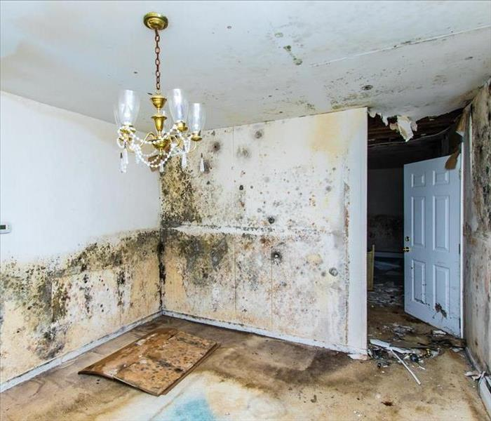 Water Damage Water Damage Can Spread Fast
