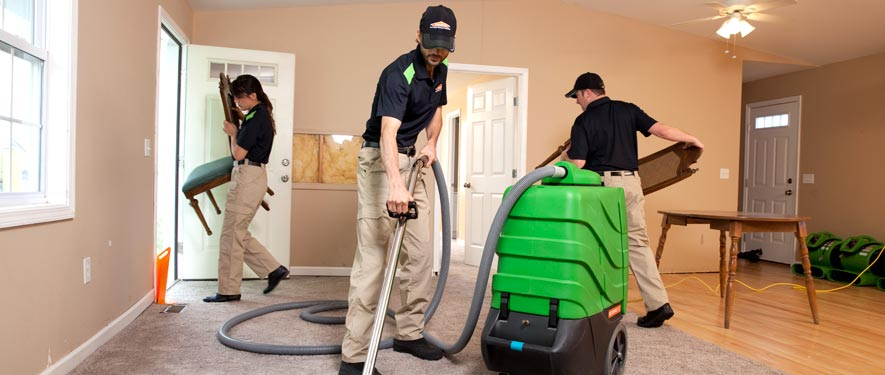 Ronkonkoma, NY cleaning services